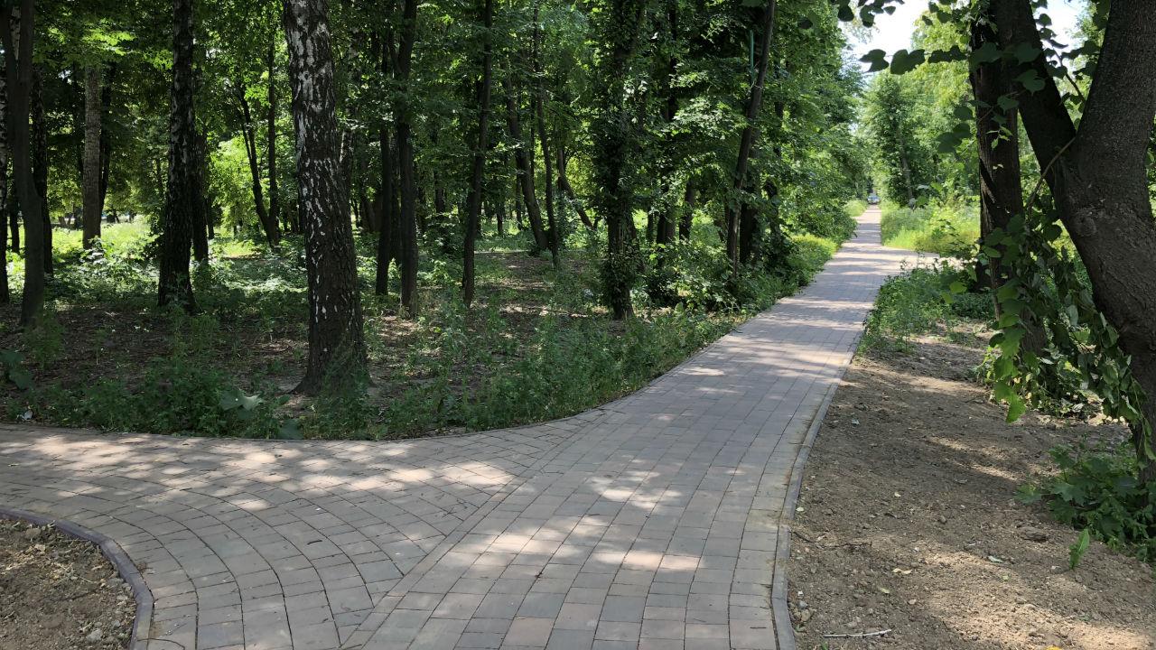 Большой обустроенный парк у комплекса